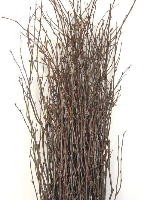 Natural Birch Tree Branches 3-4ft (25 branches)