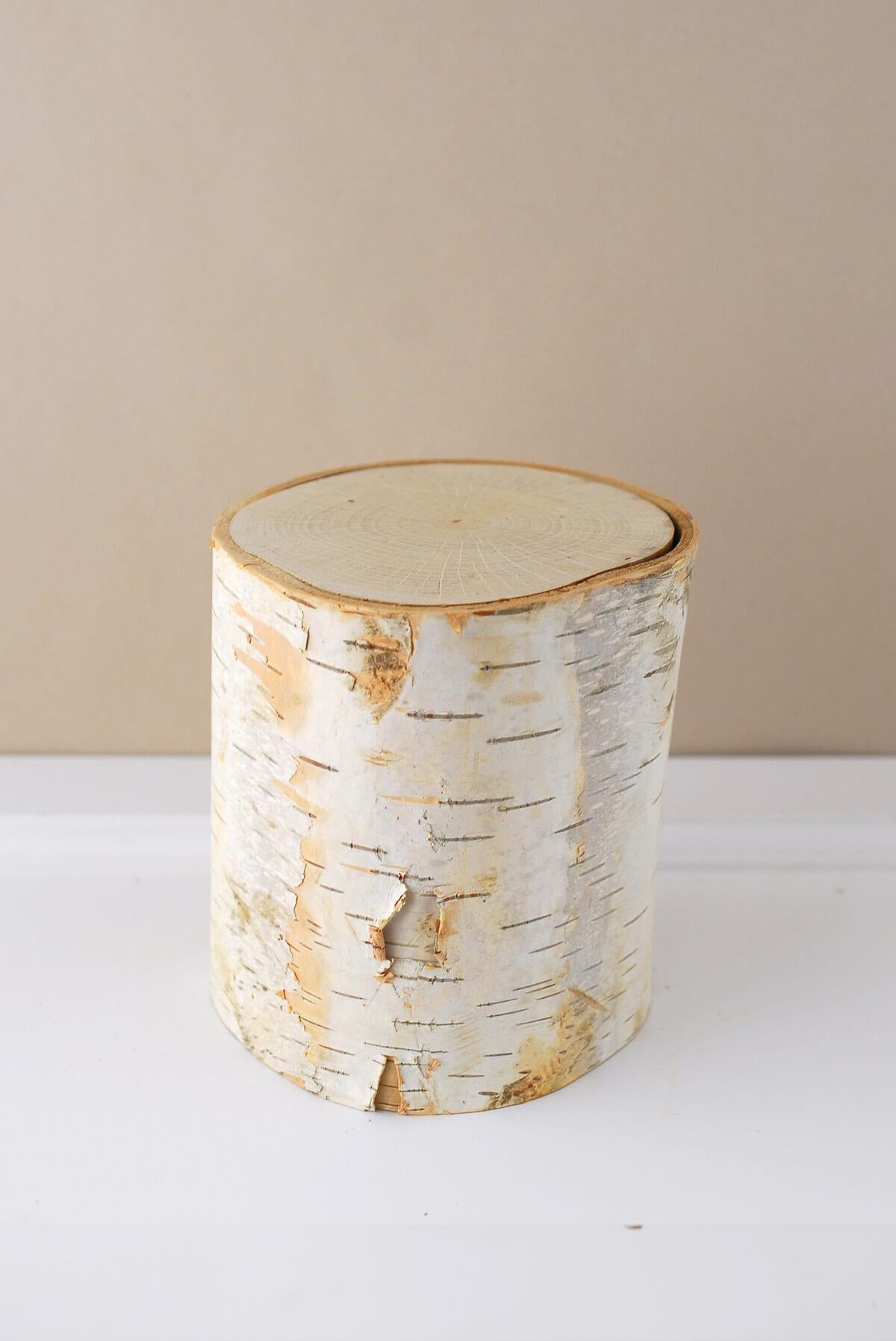 "Nature 5"" Birch Pillar"