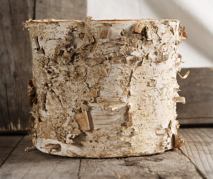 birch bark planter w plastic liner 7x6