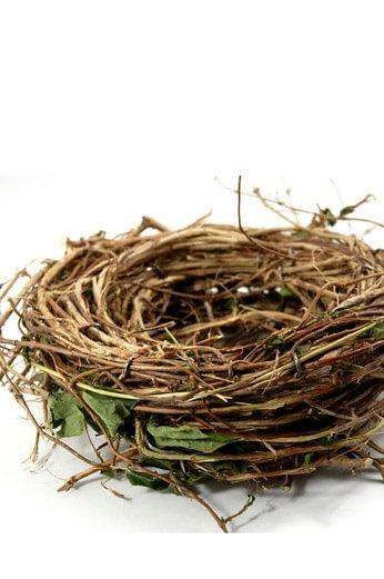 honeysuckle 10 bird nest wreath