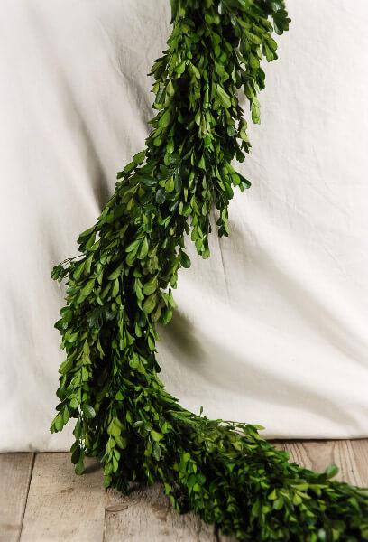 Natural Preserved Boxwood Garland 45in