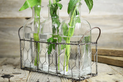 3 bottle chicken wire basket