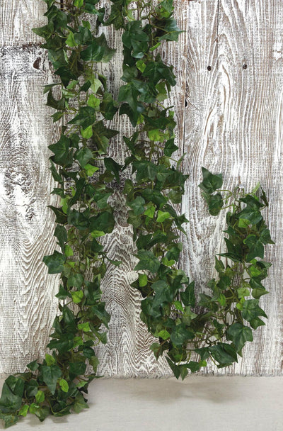English Ivy Garland Green Variegated 6ft