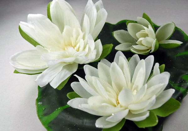 floating water lily with water drops cream 9 inch 3 flowers