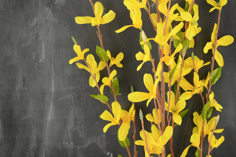 forsythia flower yellow 38in