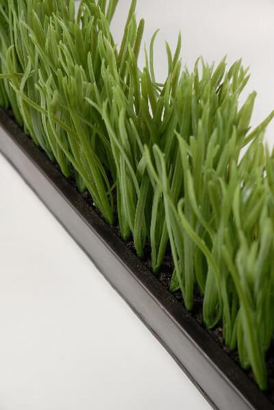 narrow long faux grass display in metal tray 25 5 long x 2 75 wide