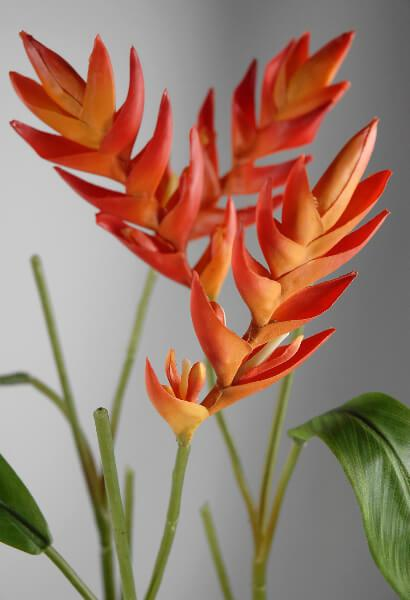 Natural Touch Heliconia Tropical Flower