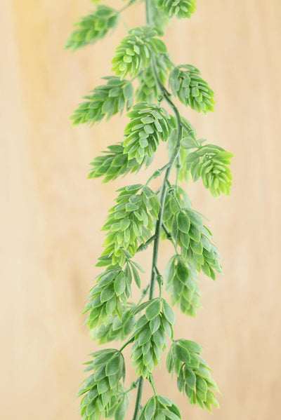 hops garland frosted green 6ft artificial