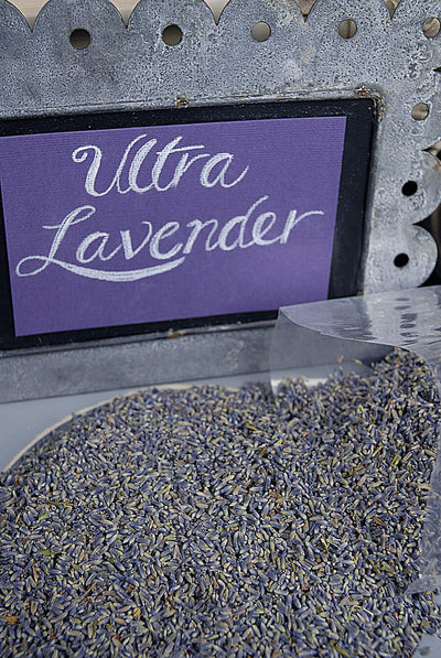 Ultra Grade Lavender 1lb Highest Quality Color and Fragrance
