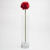 "Richland Red Poppy 26"" Set of 24"
