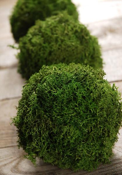 "Green Reindeer Moss 4""  Balls (set of 3)"