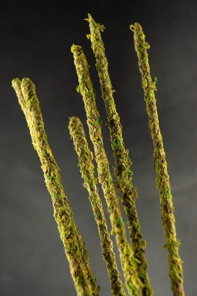 supermoss moss covered stakes green 19 inch height pack of 6
