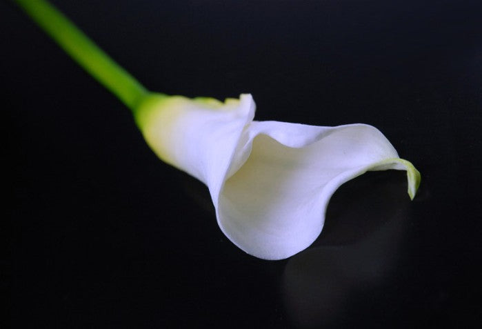 Natural Touch Flowers - Medium Calla Lily 25""