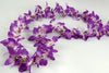 12 Purple Orchid Flower Leis