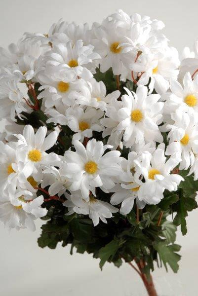 silk white daisies bouquet 72 flowers