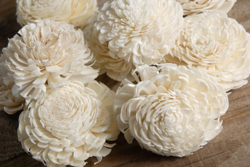 "Sola Flowers 2-2.5"" Cream White Chorki (12 flowers)"