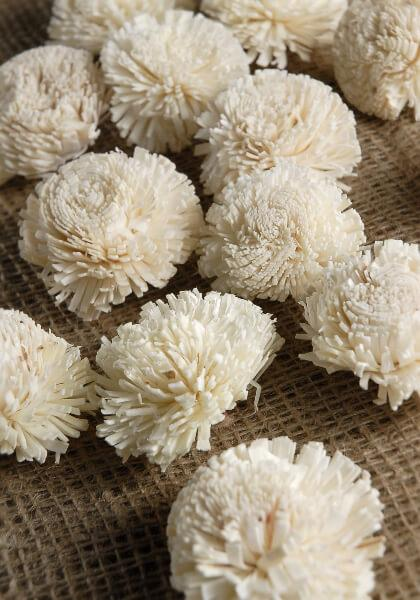sola flowers gilly flower pack of 18