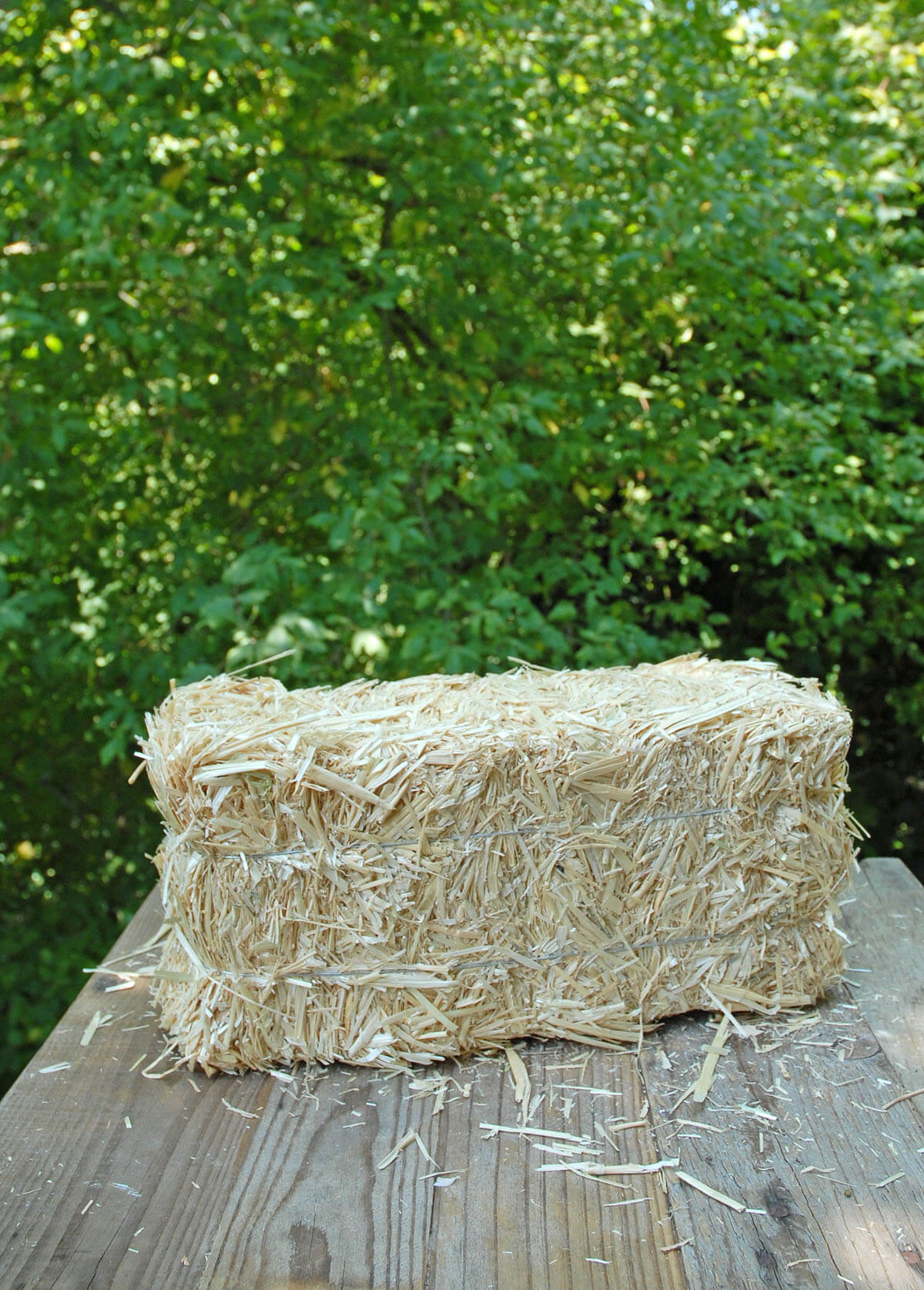 Straw Bale 13in
