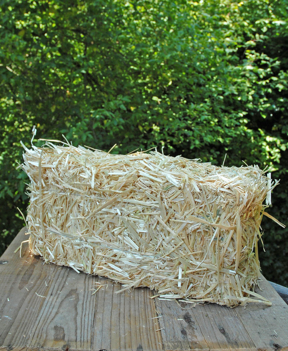 "Straw Bales 16"" Large"