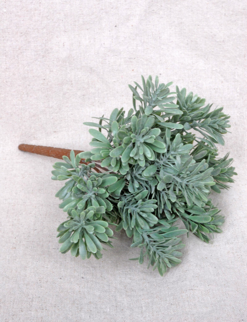 succulent grass bush x7 frosted green