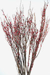 Sweet Huck Natural Huckleberry Branches Red Berries 26 -28in