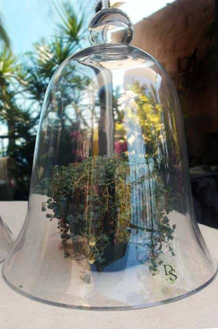 thick glass bell jar 11 1 2
