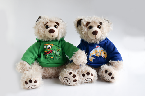 Two plush beige colored bears sit in front of a white background. The bear on the left has a green hoodie with a frog and the right bear has a blue hoodie with a salmon on it.