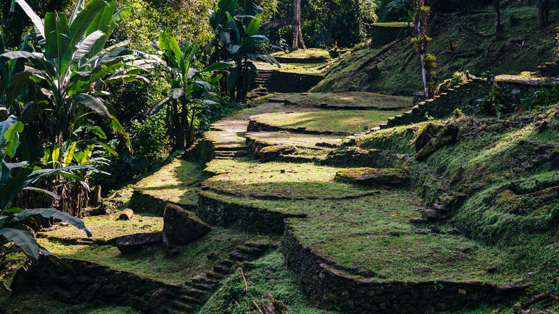 Lost City Tour Colombia