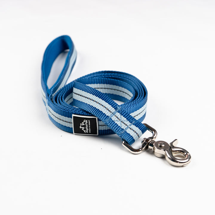 Appalachian Jazz Blue Flat Dog Leash