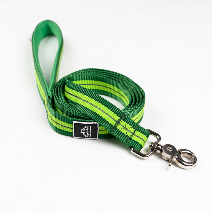 Appalachian Kiwi Green Flat Dog Leash