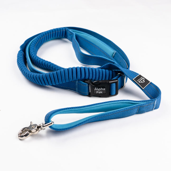 Cascades Metallic Blue Stretchable Runner Dog Leash