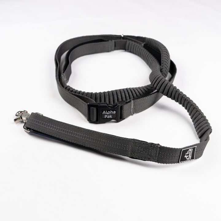 Cascades Graphite Stretchable Runner Dog Leash