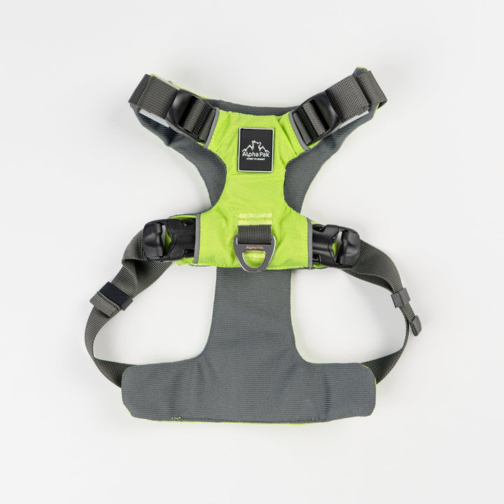 Millvue Kiwi Green EZ Fit Dog Harness