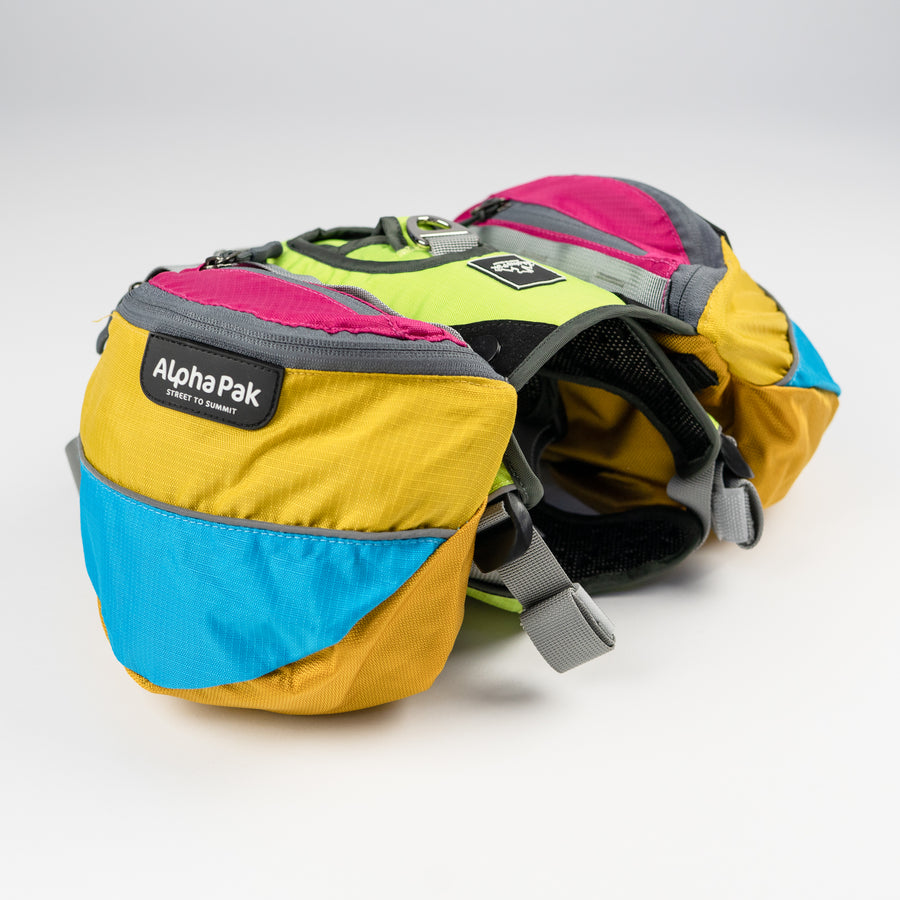 Blue Yellow Pink and Gray Wanderer EZ Latch Dog Pack with Harness