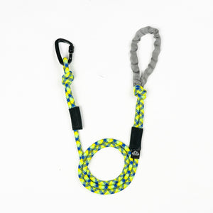 Yellow Green and Blue 10MM Kernmantle Rope Dog Leash
