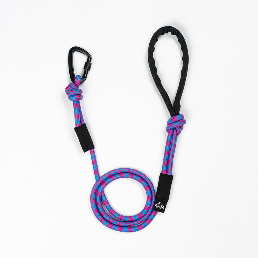 Elements Purple 10MM Kernmantle Rope Dog Leash