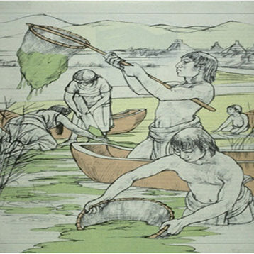 Image of the Aztec people harvesting spirulina algae to eat and support their marathon runner with vegan on the go food products.