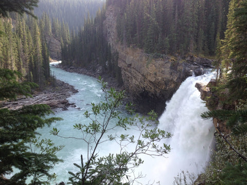 The waterfall surrounds by trees at Snake Indian Falls in Jasper National Park in Alberta Canada