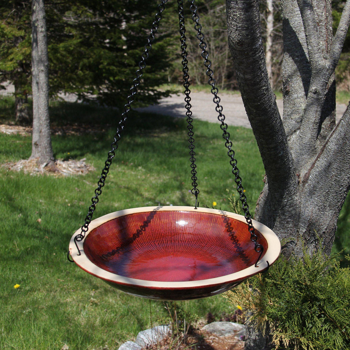 Radial Bird Bath - Hanging Style