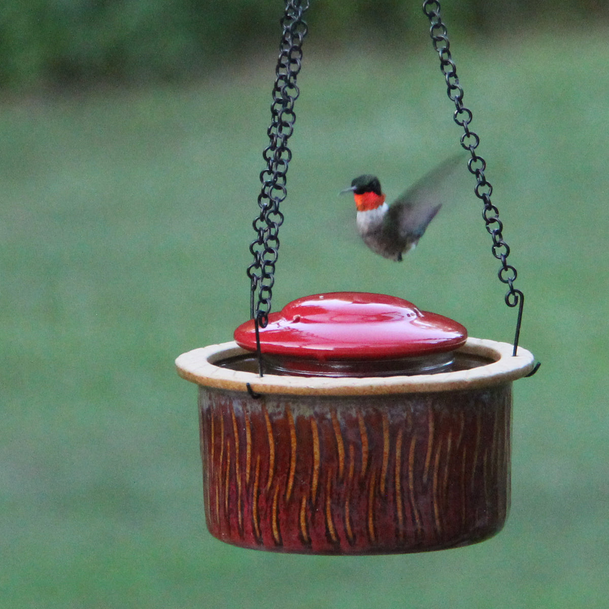 Alcyon Hummingbird Feeder