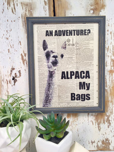 ALPACA DICTIONARY PRINT