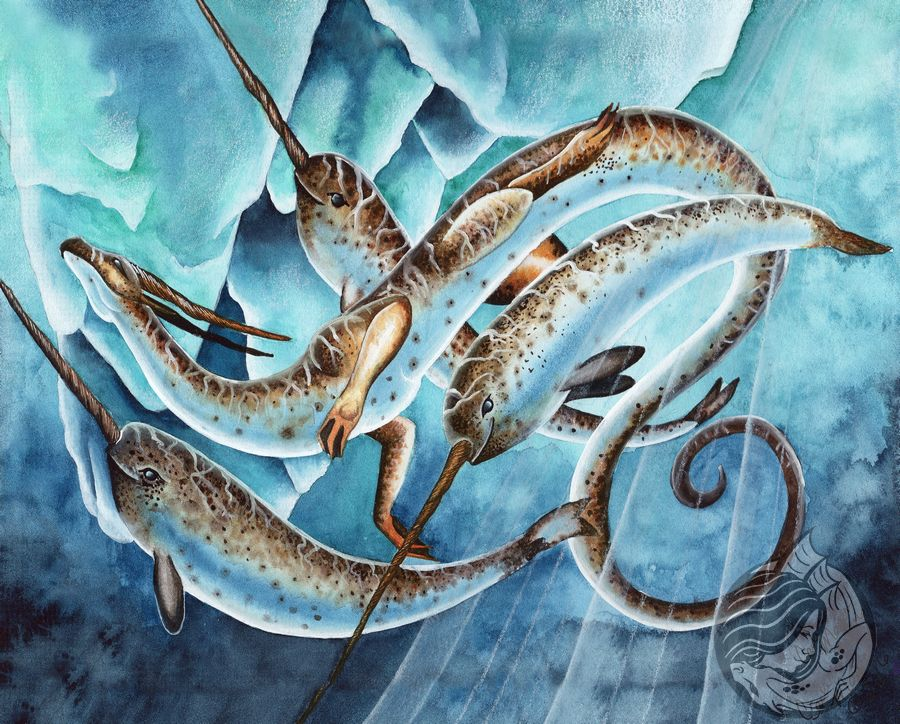 Dragon Art: A pod of 2 narwhals swimming with a dragon that is the same color and has twisting horns like narwhal tusks. There are icebergs under the water behind them.