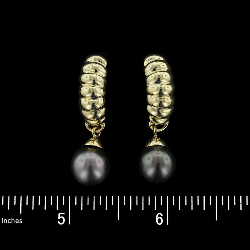 14K Yellow Gold Cultured Black Pearl Earings