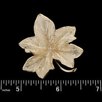 Tiffany & Co. 14K Yellow Gold Leaf Pin