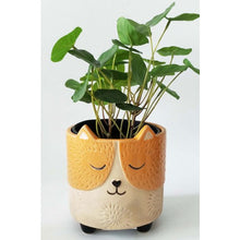 Load image into Gallery viewer, Small Cat Planter orange/sand