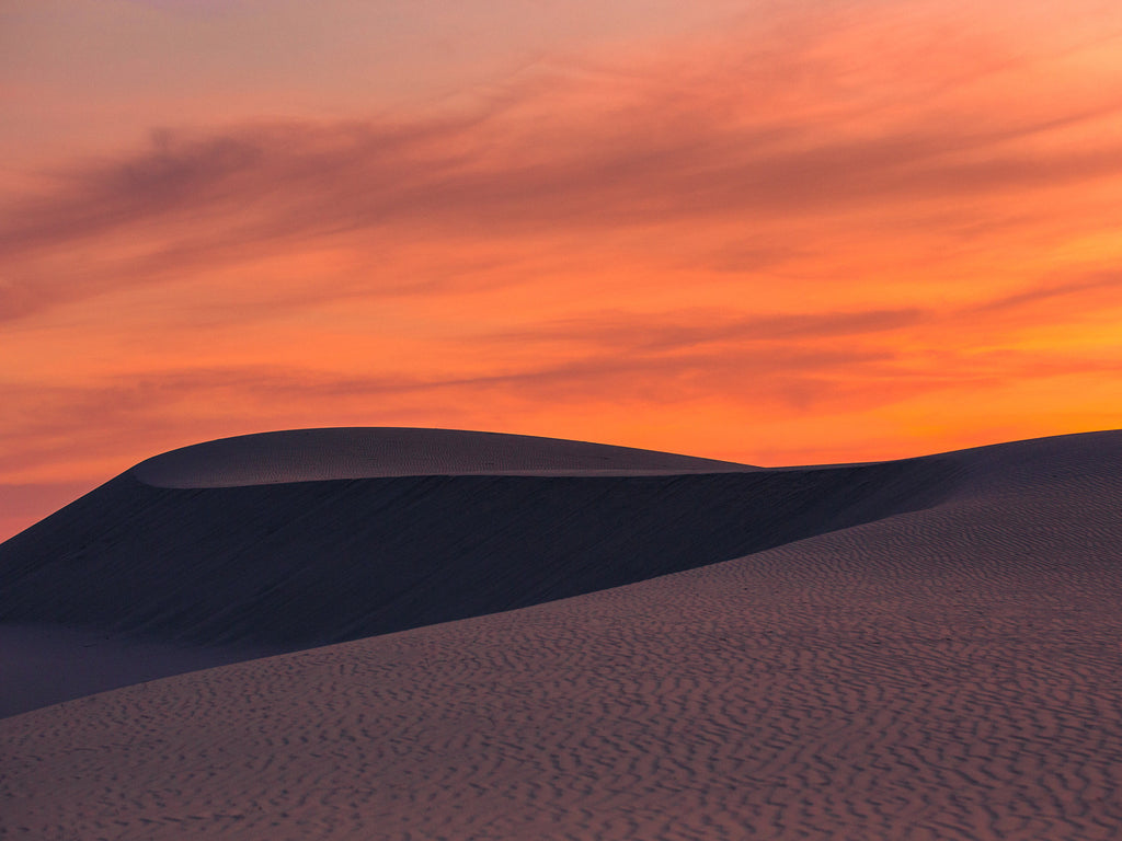 The Ever-Changing Landscape of Monahans Sandhills State Park