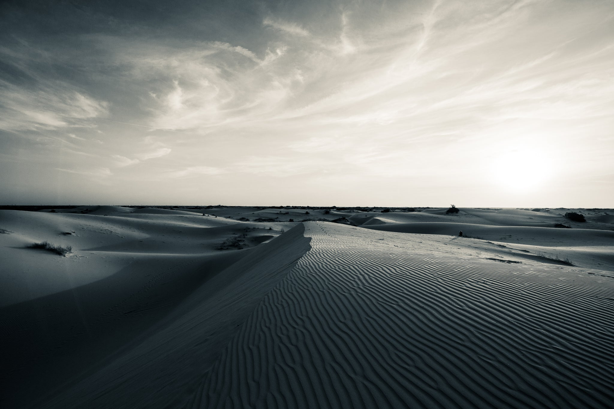 Black and White Image of Monahans Sandhills