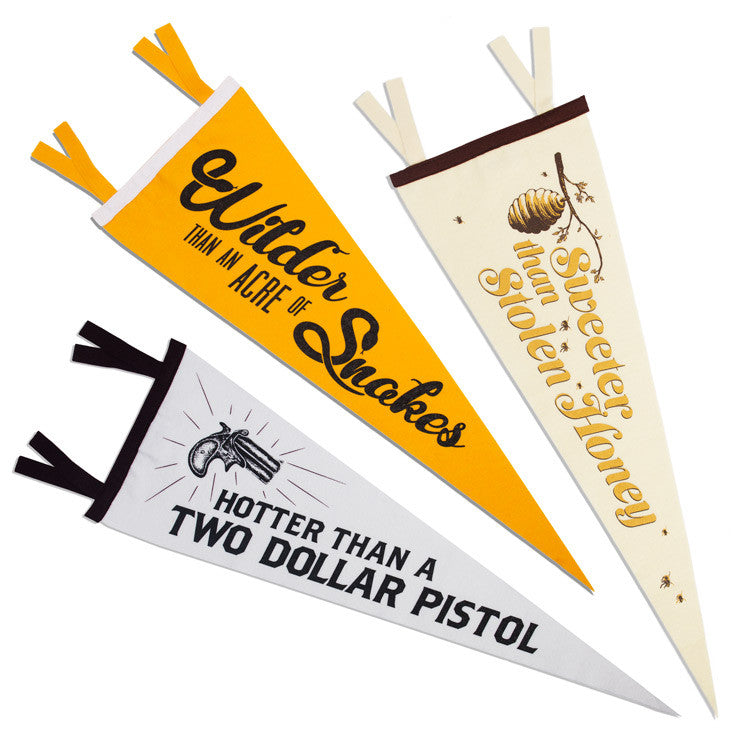 Texas Expressions Pennants