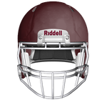 RIDDELL CUSTOM SPEED ICON ADULT FOOTBALL HELMET (SPECIAL ORDER) Not available for expedited shipping