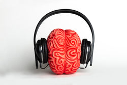 Music & The Brain; How sound effects your body and mind